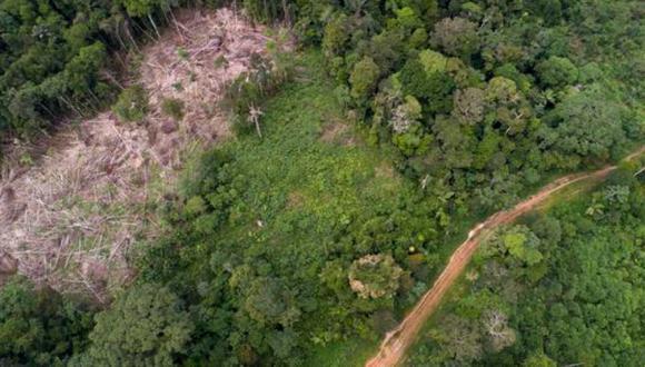 Advierten que de continuar la deforestación y tráfico ilícito de animales se podría desencadenar 1.200 nuevos virus en la Amazonía peruana. Foto: GEC
