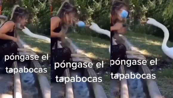 El pato se hizo viral por 'atacar' a la mujer que traía mal puesto el tapaboca.