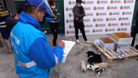 Las autoridades rescataron a 11 perros que iban a ser vendidos de manera ilegal en Mesa Redonda. (Foto: Municipalidad de Lima)