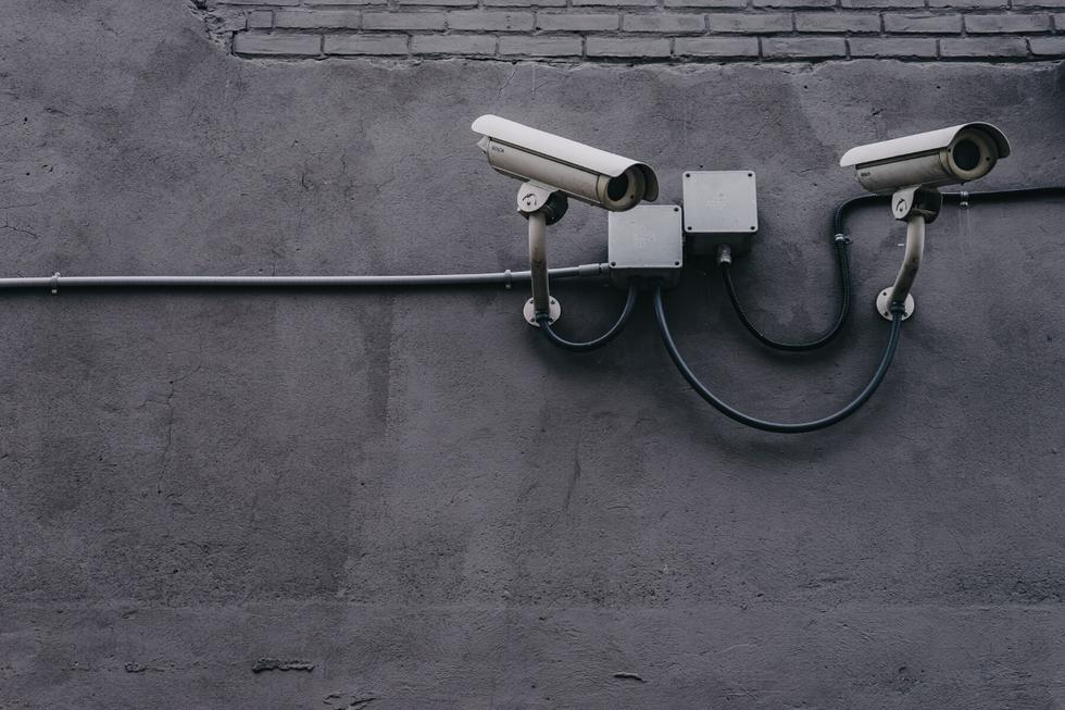 Una cámara de seguridad registró en video una curiosa escena protagonizada por un curioso personaje. (Foto: Pixabay/Referencial)