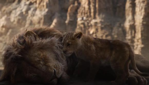 Dos gatos callejeros protagonizan escena muy triste de El Rey León