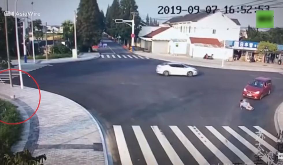 Un perro 'enseña' a un humano a cruzar la calle. (YouTube | RT en Español)