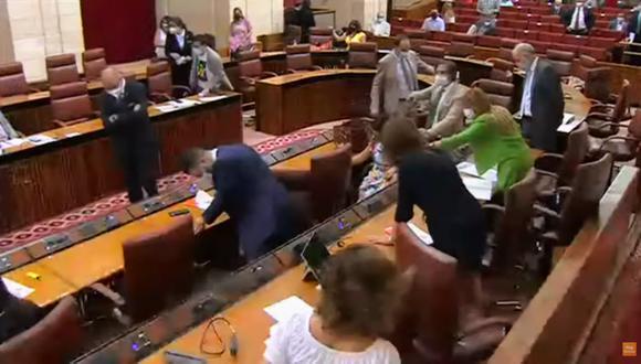 El roedor apareció en el Salón de Plenos e hizo que los diputados se tengan que parar de sus asientos.