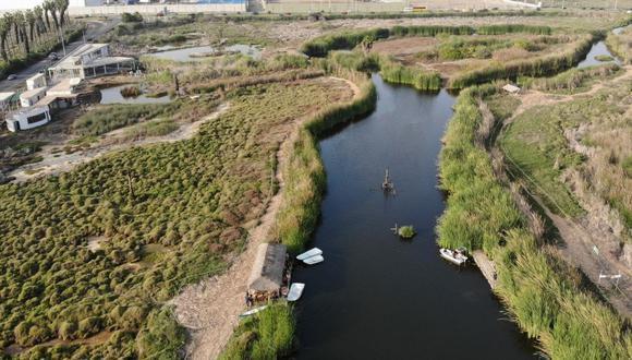 El humedal Pantanos de Villa es un lugar de anidación y punto de tránsito migratorio de más de 200 especies de aves. (Foto: Municipalidad de Lima)