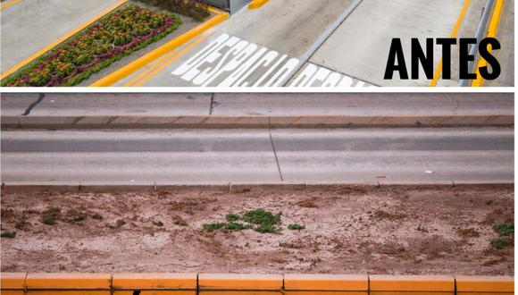 Las áreas verdes adyacentes al Metropolitano se encuentra en abandono indicó la Municipalidad de Lima. (Foto: MML)
