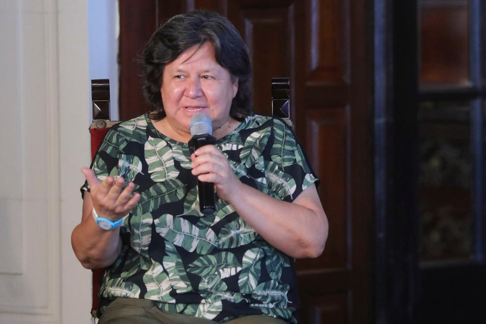 Ariela Luna, ministra de Desarrollo e Inclusión Social, brinda mayores detalles sobre el bono de S/380. (Foto: Presidencia Perú)